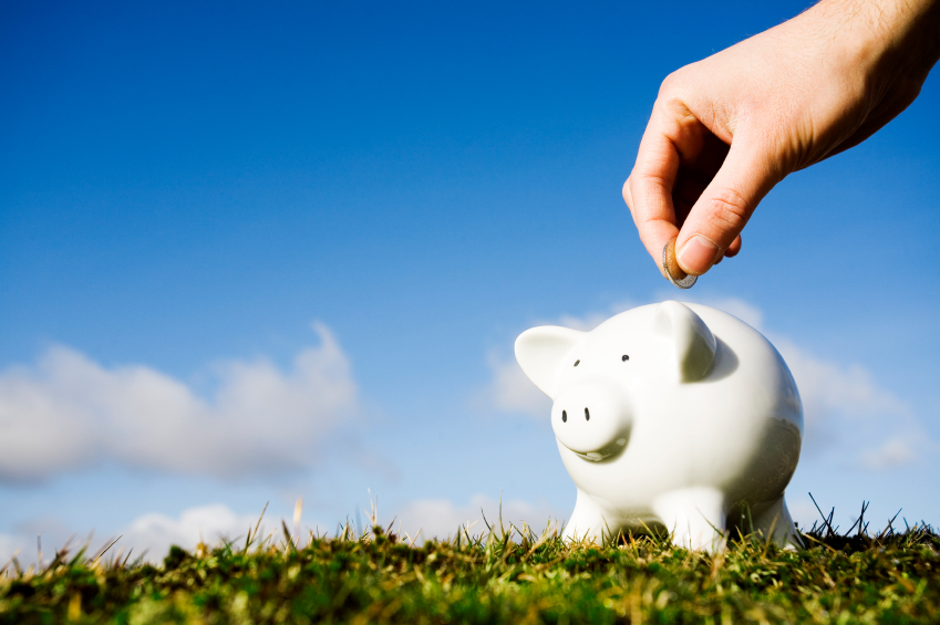 person putting money into piggy bank outdoors on the grass