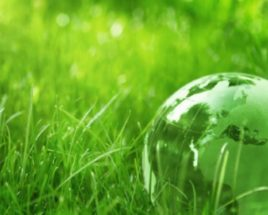 Sustainable Dynamic Portfolios