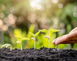 ESG developments sustainable investing