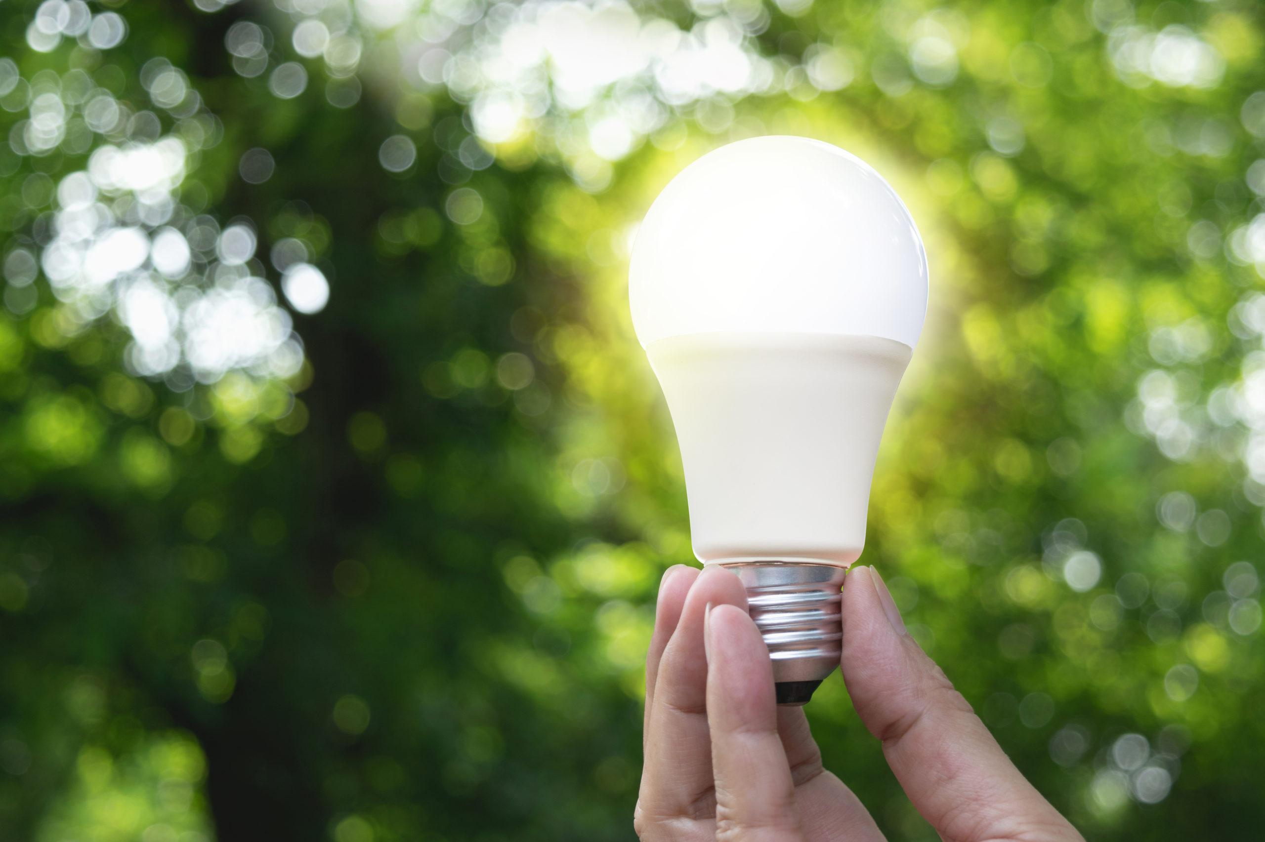 energy lightbulb